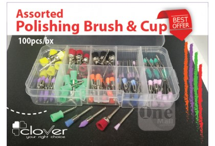 Assorted Prophy Brush & Rubber Cup