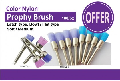 Color Prophy Brush, Flat or Bowl Type