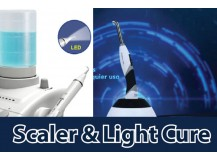 Scaler & Light Cure